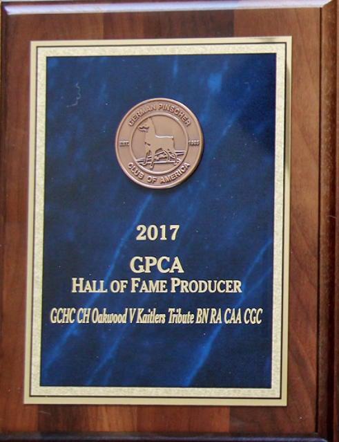 2017 GPCA Hall of Fame Producer Award - GCHC CH Oakwood V Kaitlers Tribute BN RA CAA CGC