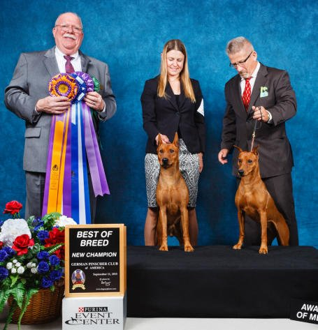 Jill Eastman & Trent Wilkinson with Nelson & Pink at the 2015 GPCA NATIONAL SPECIALTY